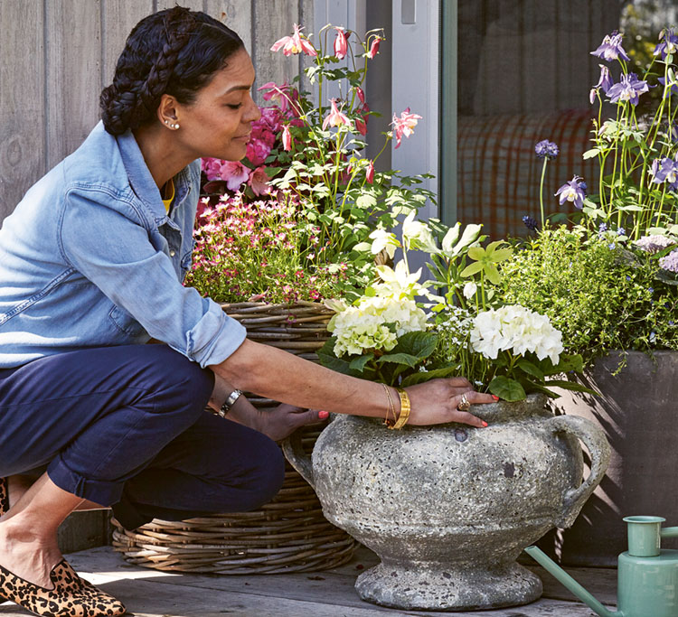 The author, a Black woman wearing her hair in a French braided up-do, wears a light denim button-up blouse with the sleeves rolled up, dark denim jeans, and leopard print flats. She leans over, tending flowering flowering potted plants.