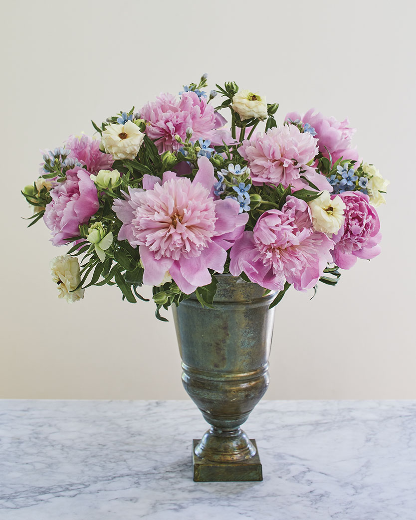 step 4, blue tweedia nestled among pink peonies and creamy white 'Butterfly' ranunculus