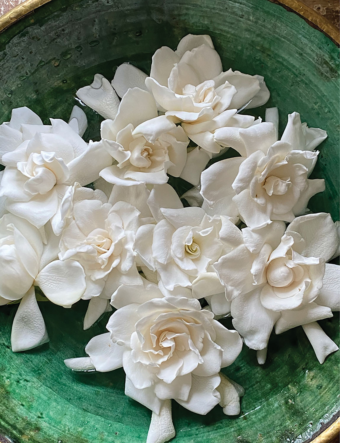 Gardenia blooms floating in a green bowl.