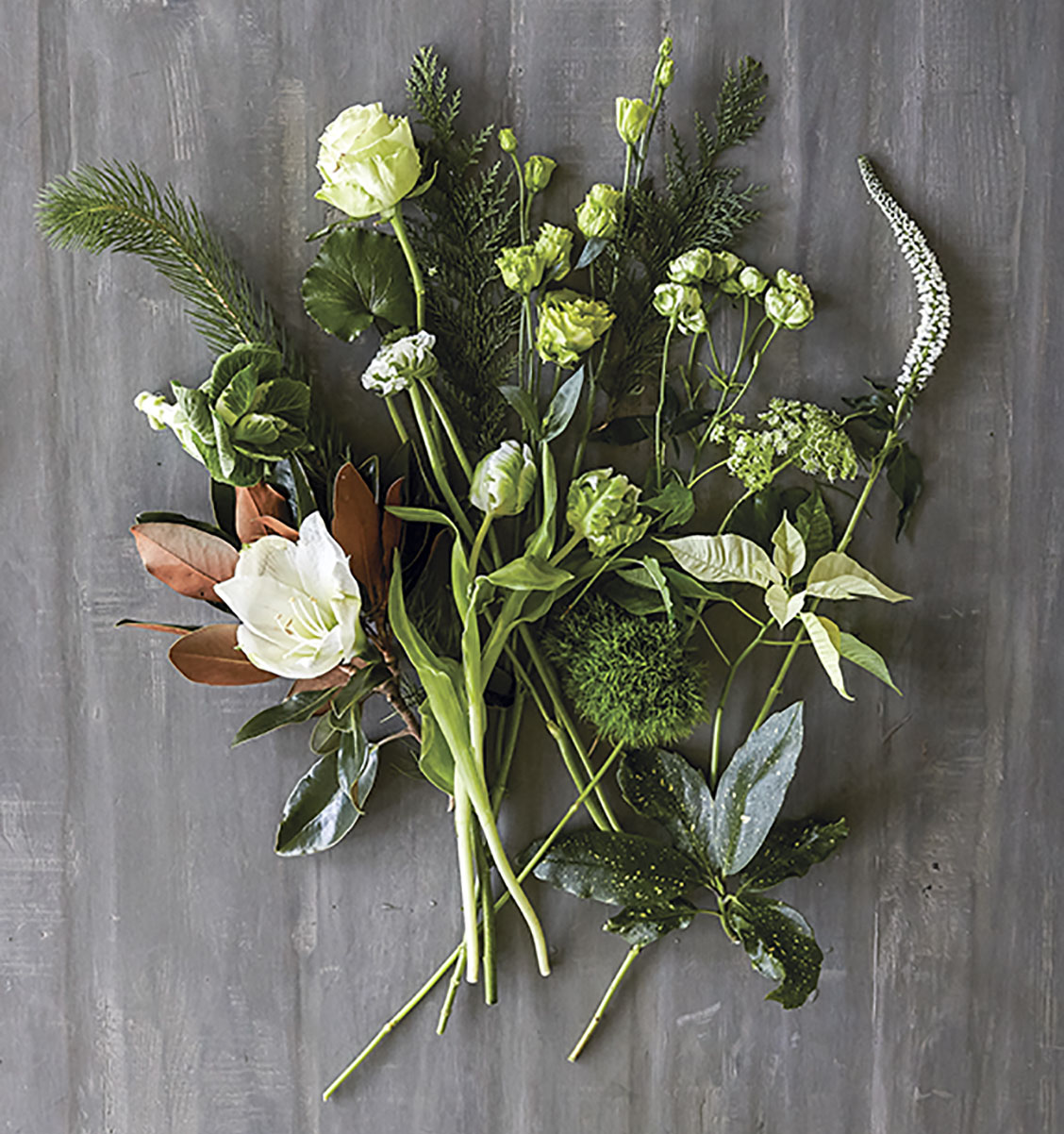 overhead photo of plant materials for floral tutorial by Kakhi Huffaker Wakefield of K Wakefield Designs