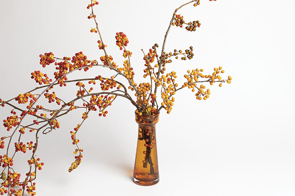 amber vase filled with branches covered in red and yellow poke berries