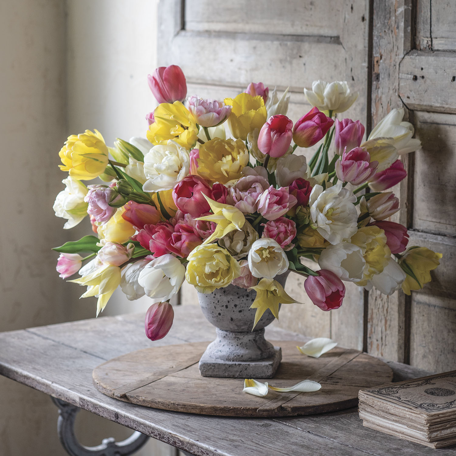 multicolored tulip arrangement by Sandra Sigman with pink, yellow, and white blooms