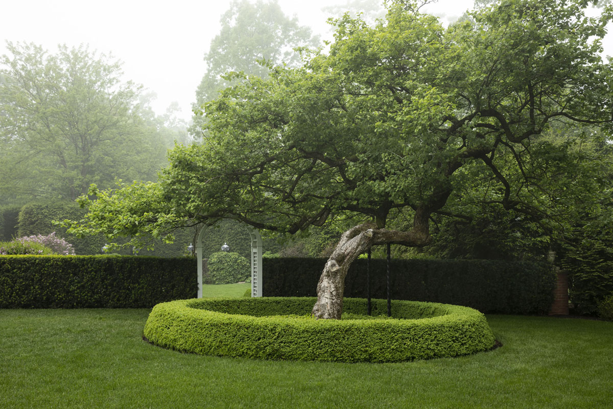 """Caption from the book Gardens of the North Shore of Chicago: """"A graceful, ancient hawthorn tree is artistically braced for support."""" (Garden Hybrid in Highland Park)"""