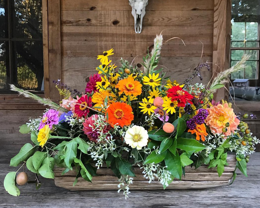 Rustic arrangement in a long, low vessel with zinnias, black-eyed Susan, persimmons, and pears by Little Bluestem, a farmer-florist in Jackson MS