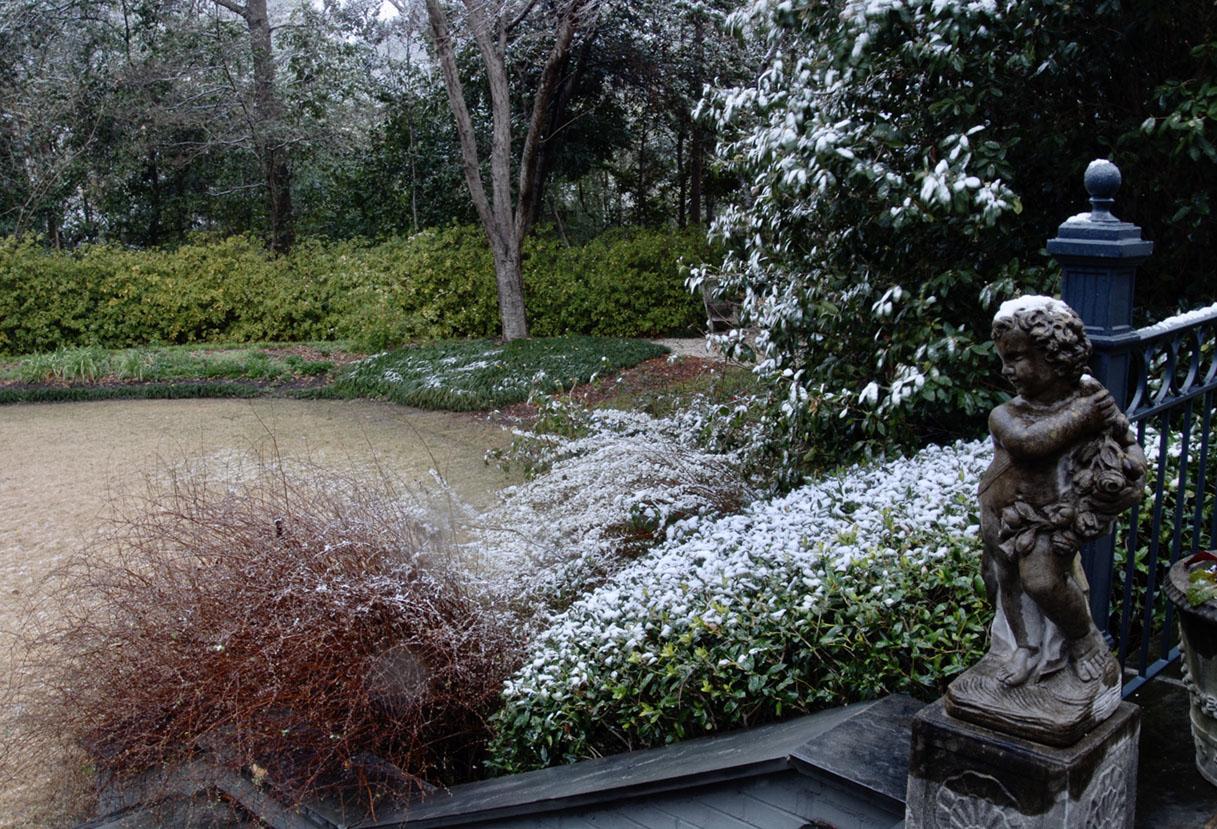 winter garden at the home of Mary Walton Upchurch