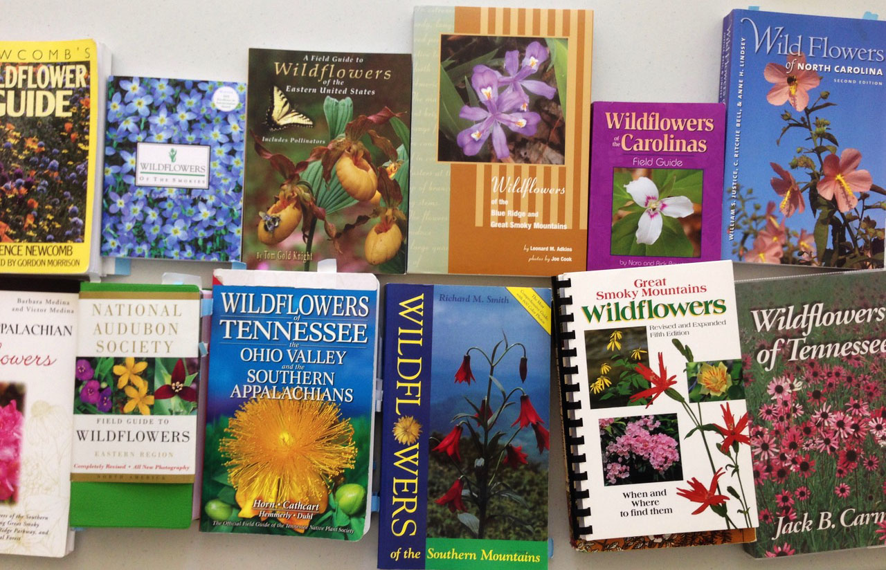 Mary Walton Upchurch's personal library of wildflower books