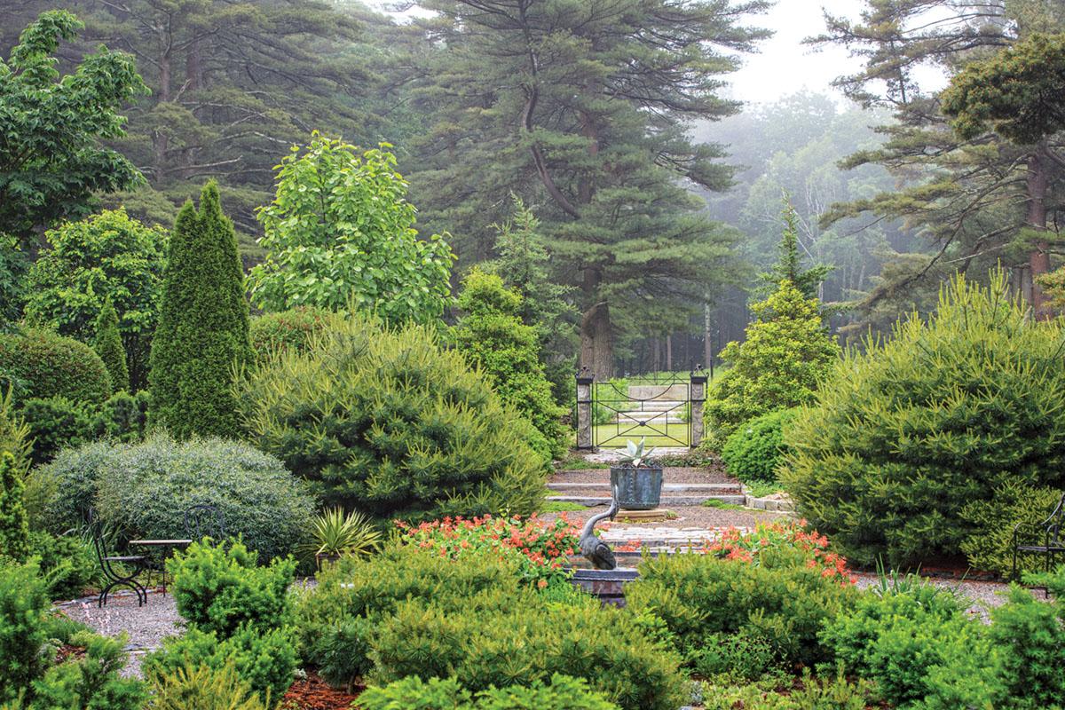 lush Connecticut garden belonging to John Funt