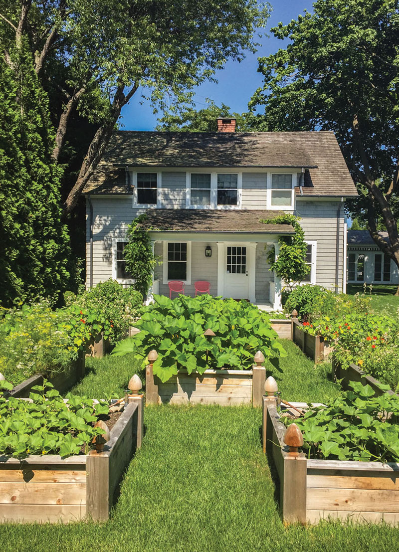 cottage with raised vegetable garden