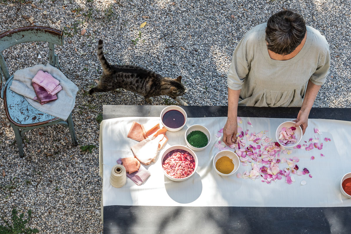 An overhead view of one of the sisters of PUSCINA FLOWERS using petals to make dye at an outdoor table set on gravel. A gray tabby cat meaders by.