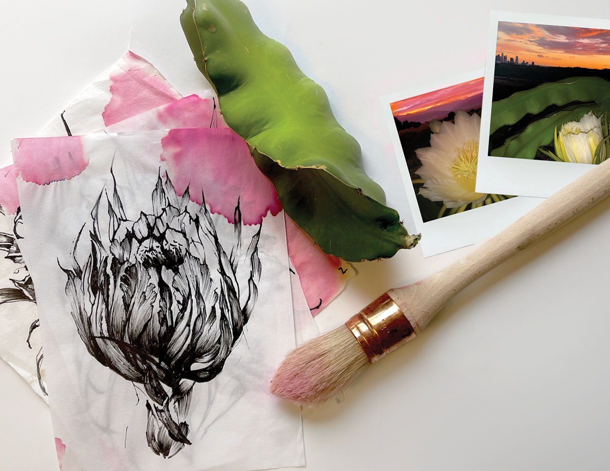 collage of garden snapshots, watercolor paint brush, and black-and-white illustration of a pitaya bloom
