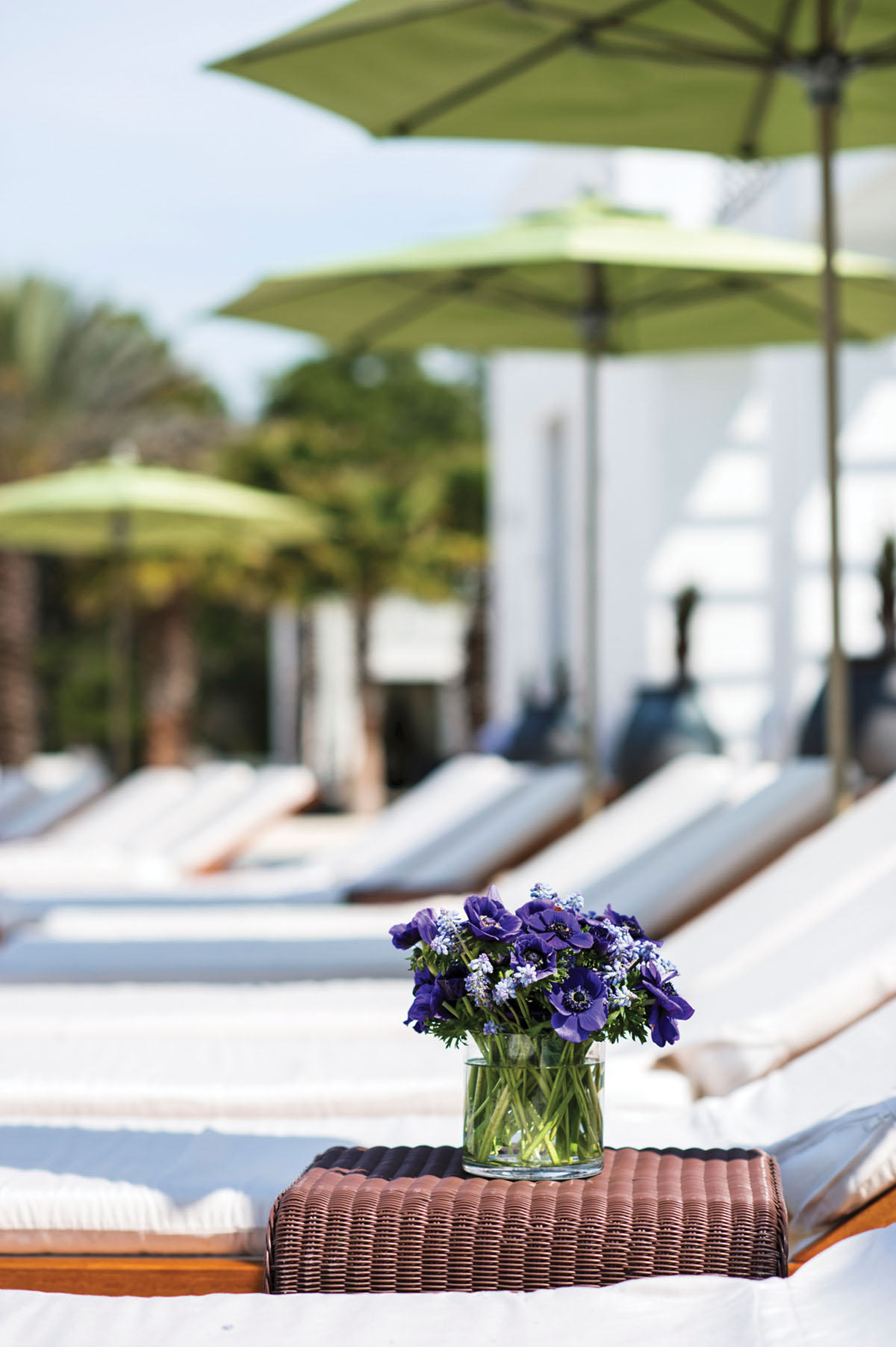 purple flower arrangement set on a woven side table beside a row of chaise lounges shaded by green umbrellas by the pool