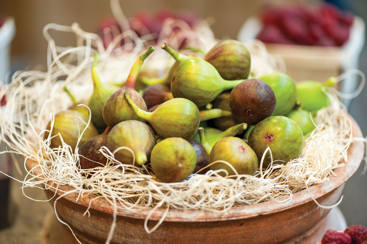 Fresh figs nestle in straw in a clay pot