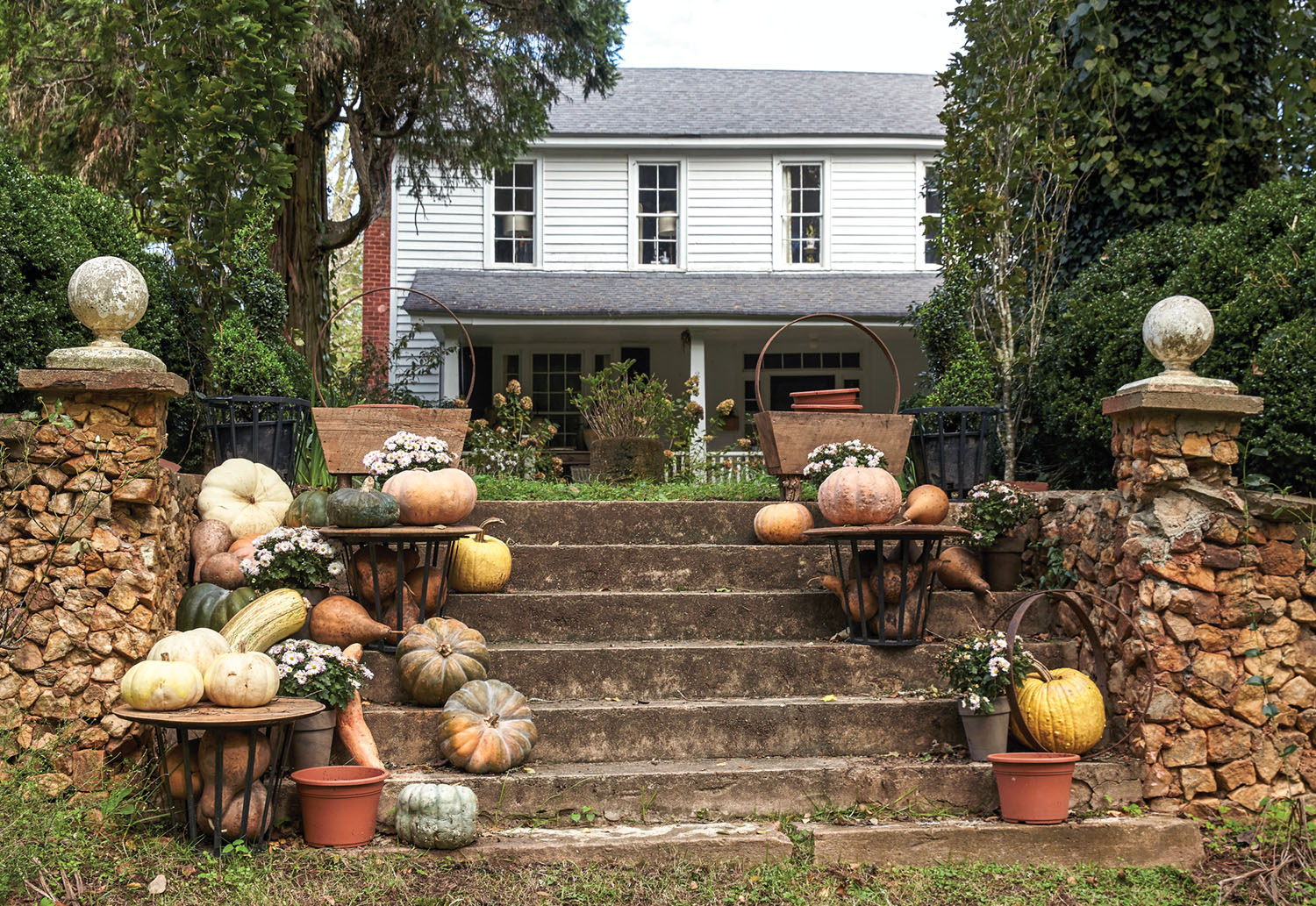A display of pumpkins and other squash in cream, pale orange, and yellow decorate steps flanked by stone pillars. In the background is Keith Robinson's two-story white farmhouse