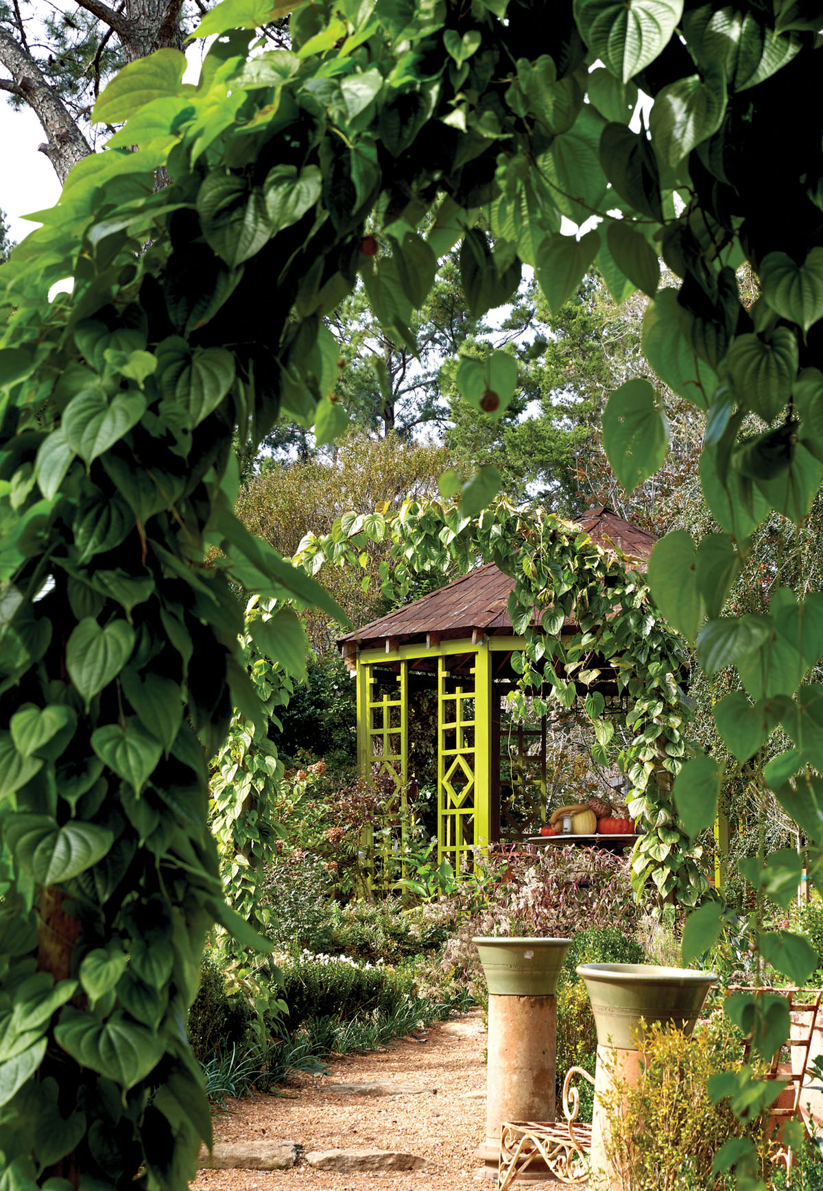 Lush, vine covered arches frame a path leading to a garden folly at Keith Robinson's home at Redwine