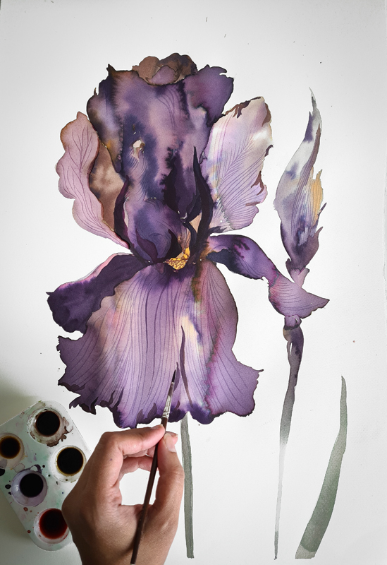 close-up of artist Safiyyah Choycha's hand as she paints a purple iris in watercolor