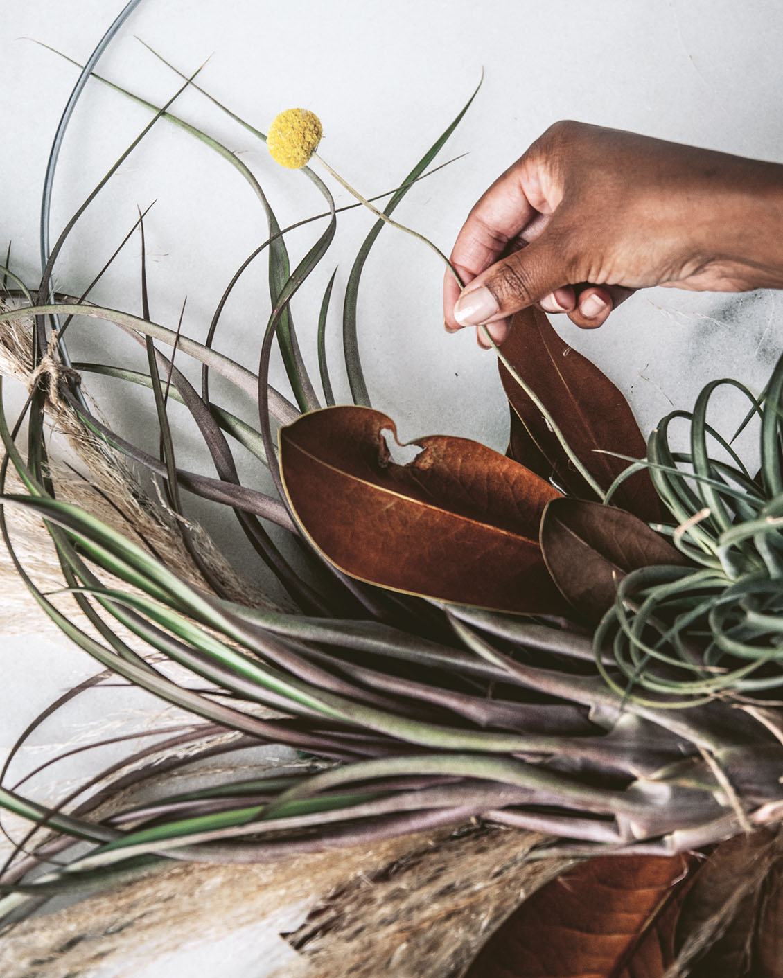 Air plant wreath how-to, Step 9, adding billy balls